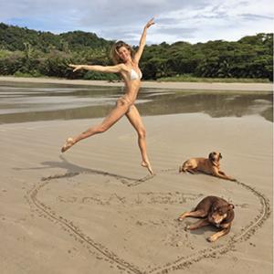 body summer plage chien